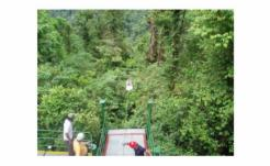 2008 COSTA RICA